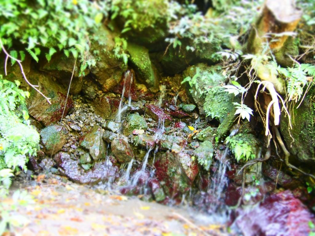 雄川の岩清水