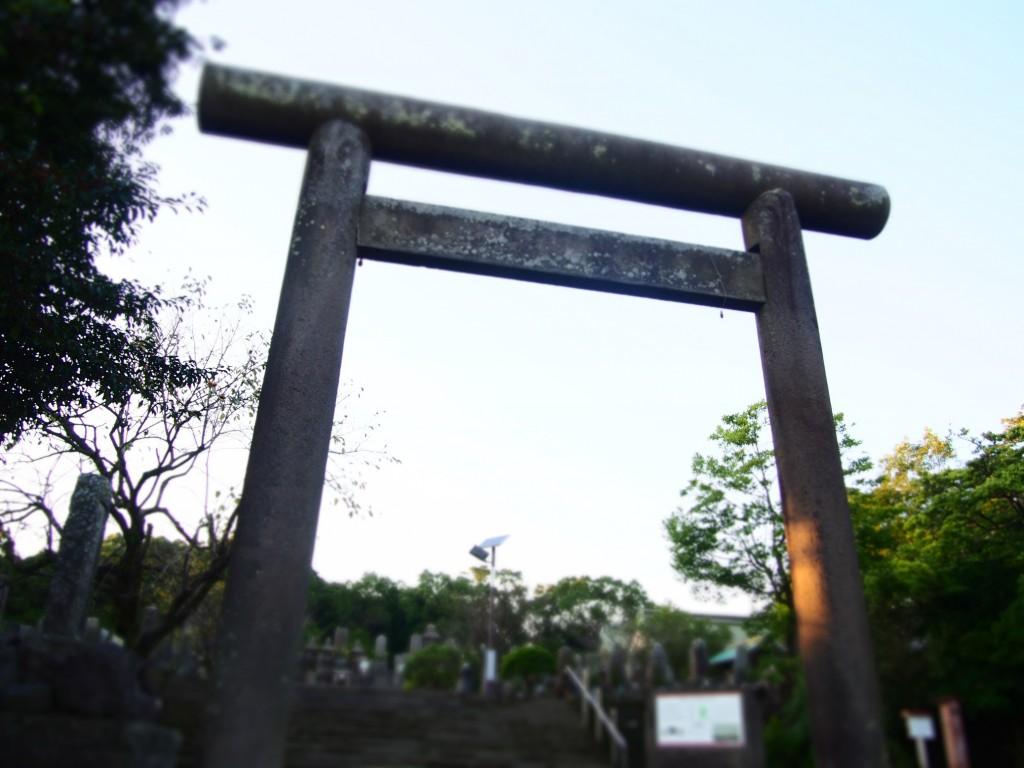 南洲神社の鳥居