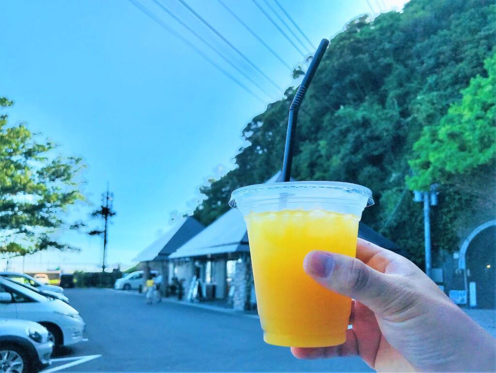 佐多岬のマンゴージュース