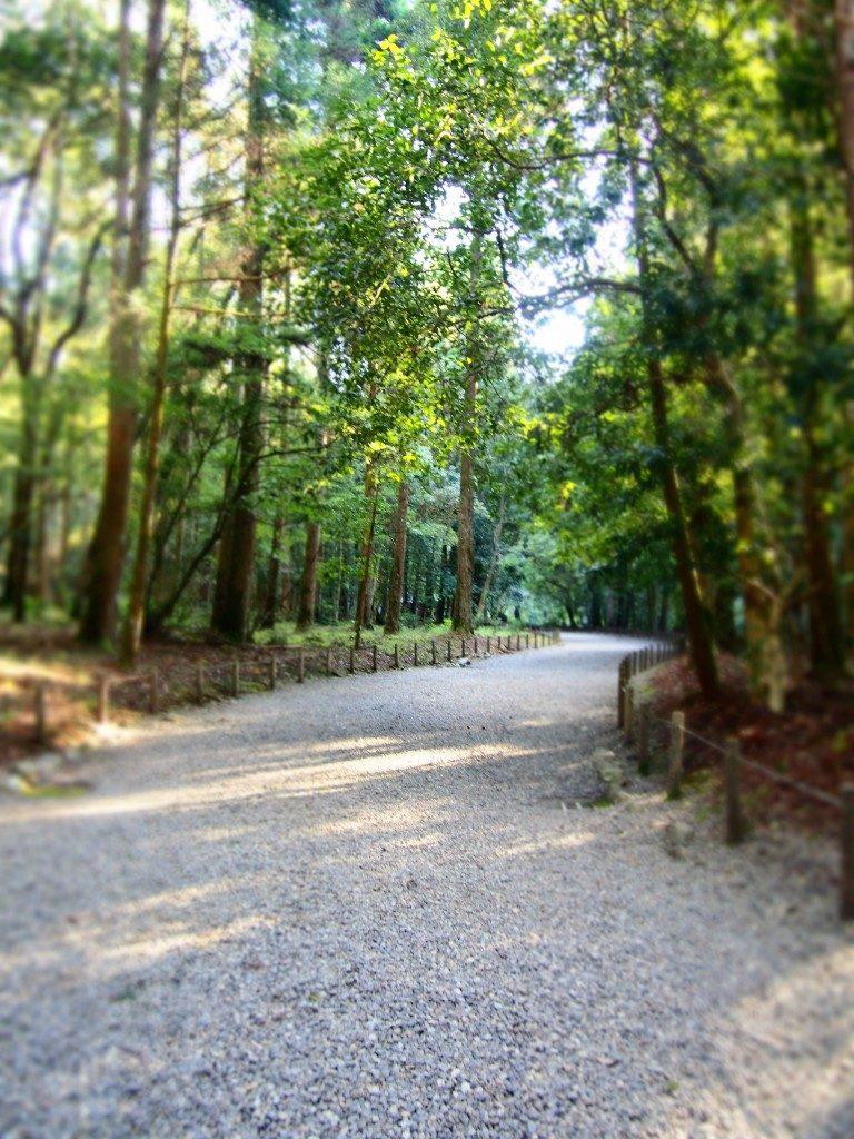 吾平山陵の参拝道