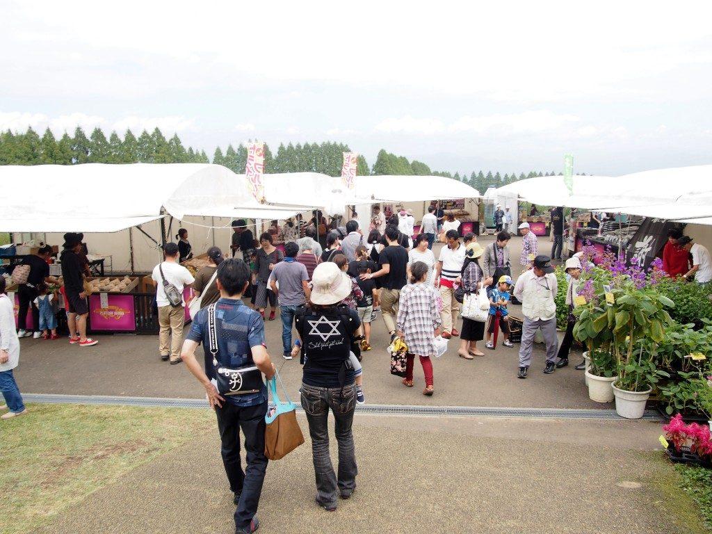 cosmos festival 2016