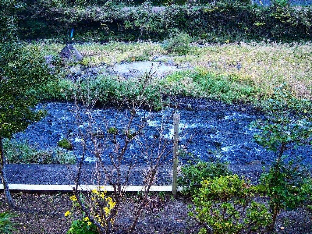 かれい川の湯の眺め