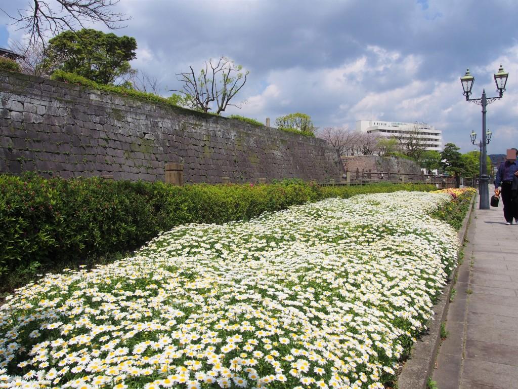 鶴丸城前の花壇