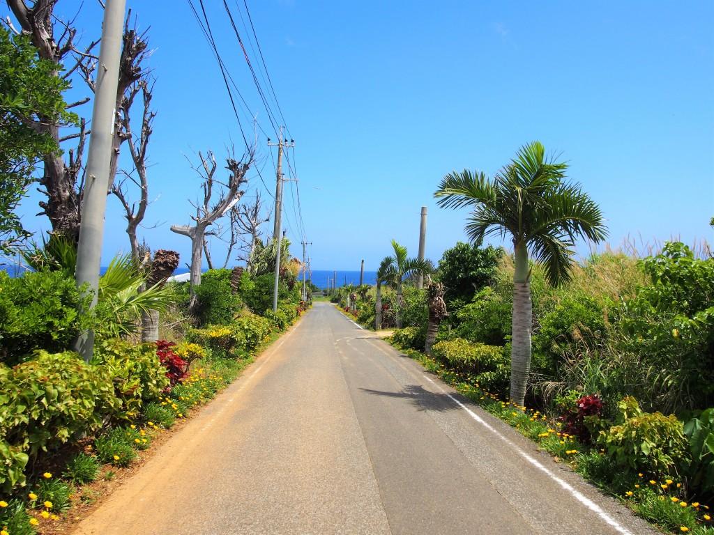 沖永良部島の道