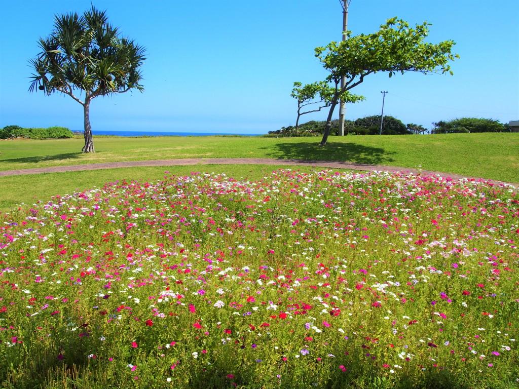 笠石海浜公園