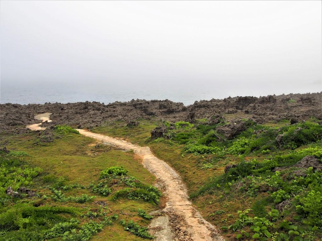 沖永良部島のフーチャへの道