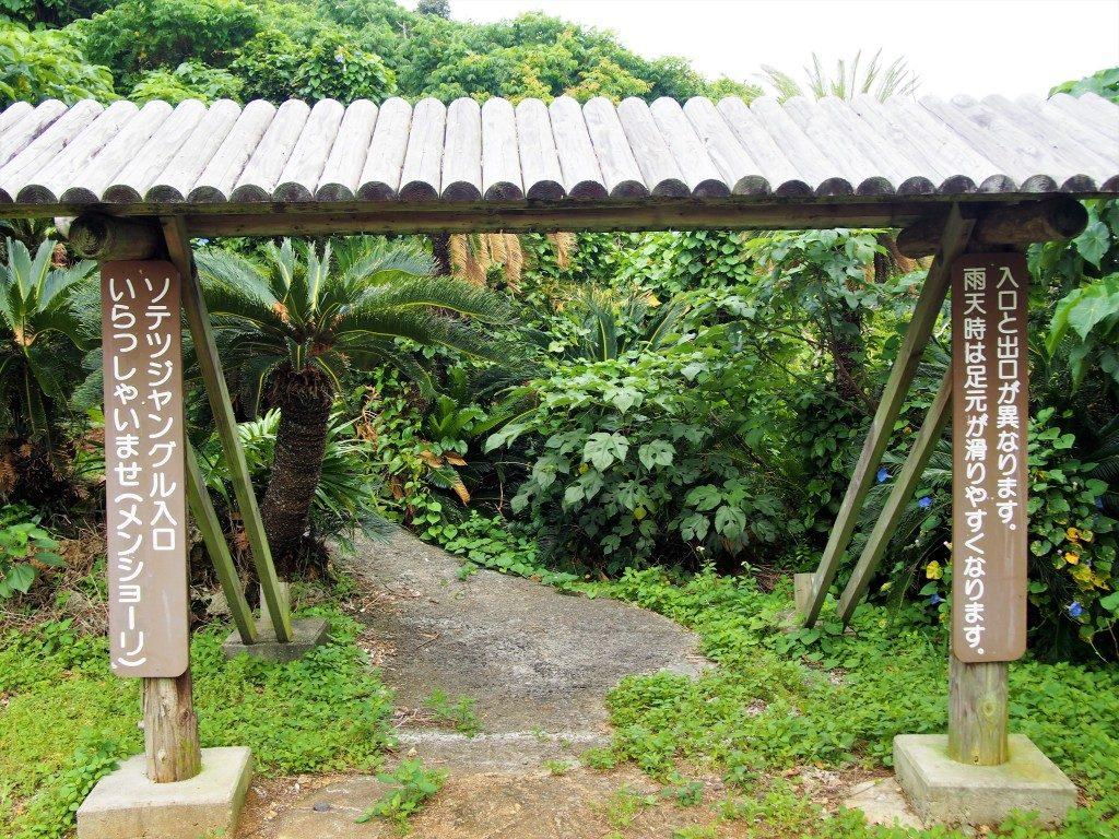ソテツジャングルの入口