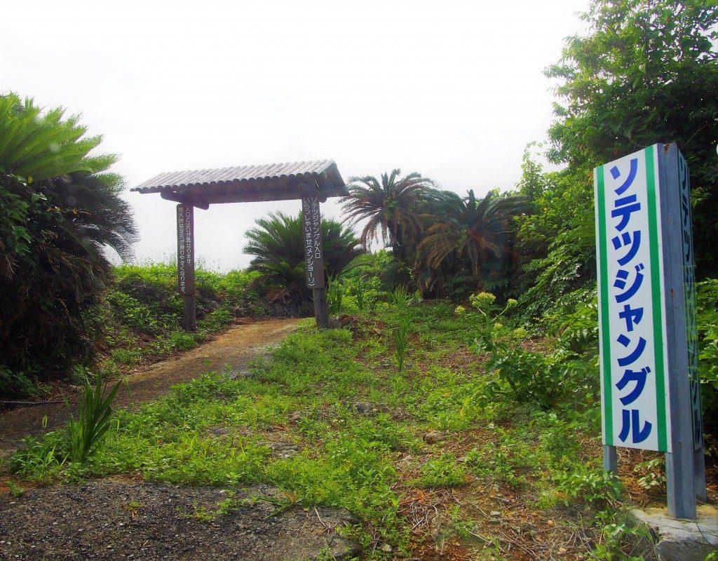 ソテツジャングルの出口