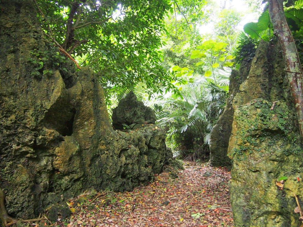 後蘭孫八城の岩
