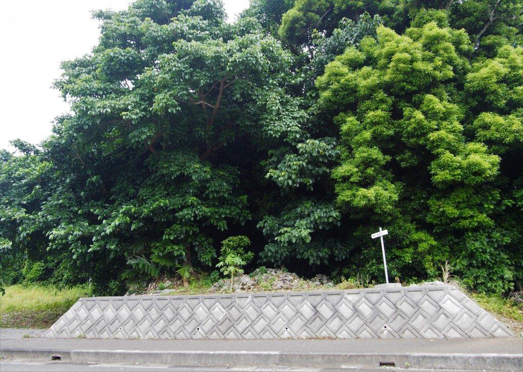 後蘭孫八城の南側入口
