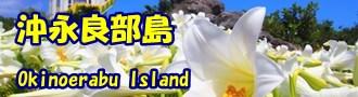 沖永良部島バナー