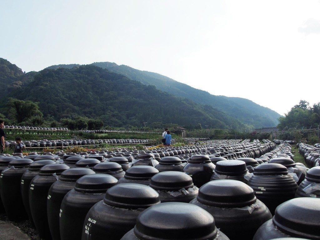 黒酢の里「桷志田」