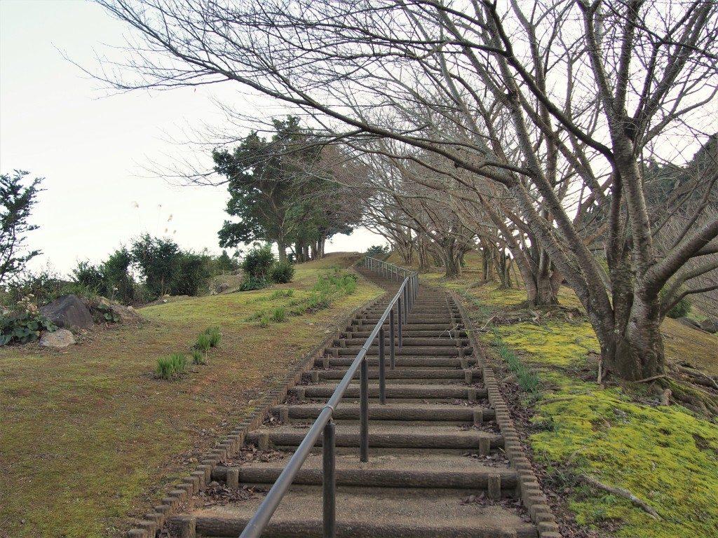 赤崎橋パーキングパーク