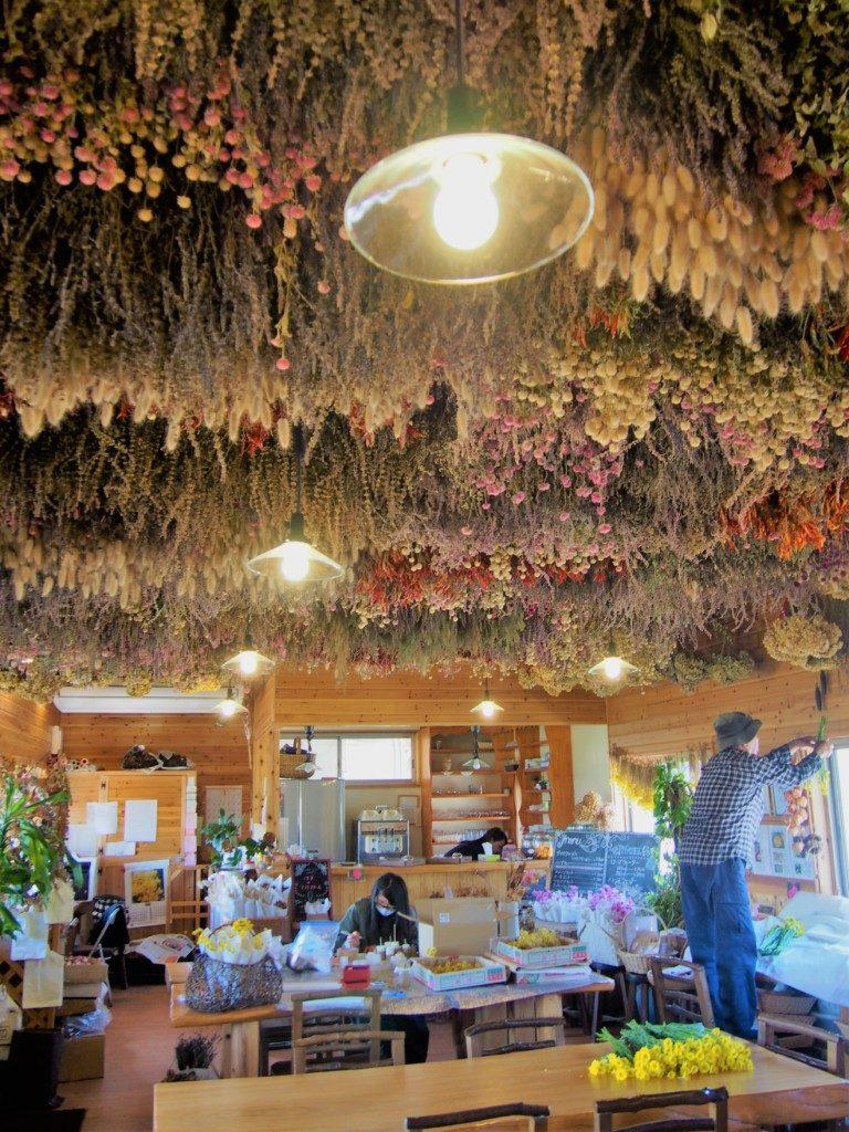 ダマスクの風のカフェ
