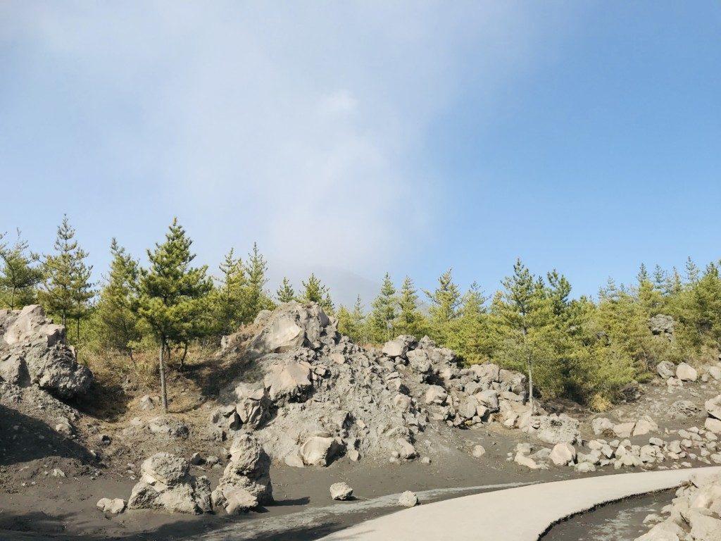 有村溶岩展望所の遊歩道