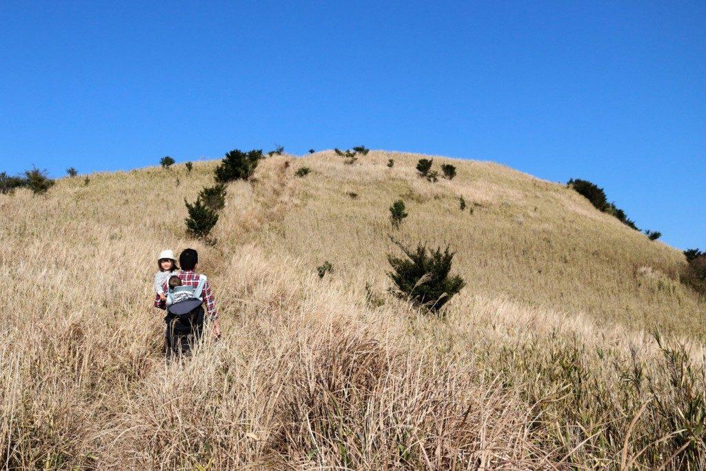 狐ヶ丘高原の登山道