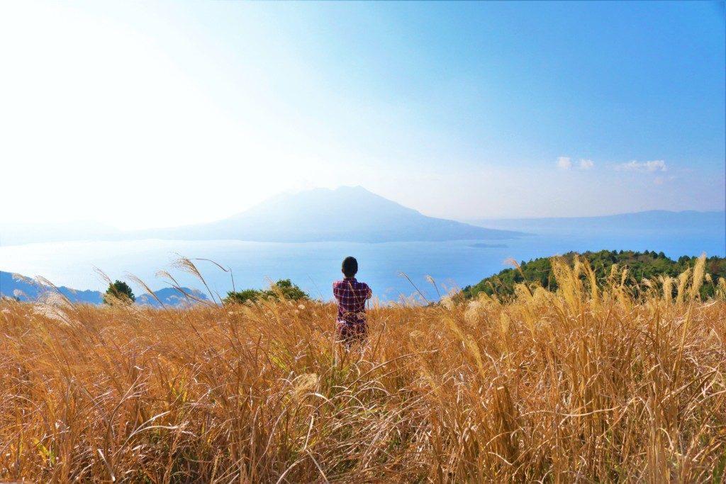 狐ヶ丘の風景