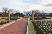 寺山いこいの広場