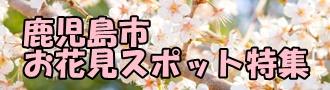 お花見スポット特集バナー