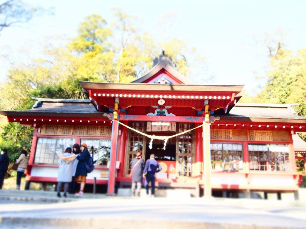 蒲生八幡神社の社殿