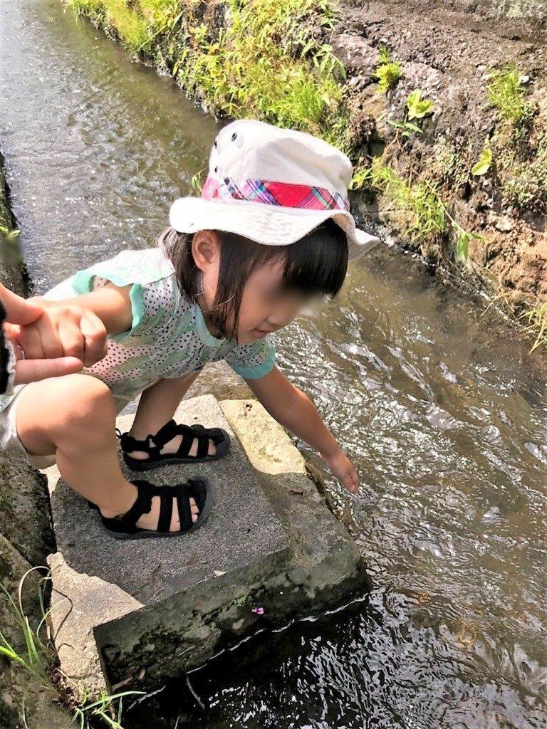 喜入旧麓の水路