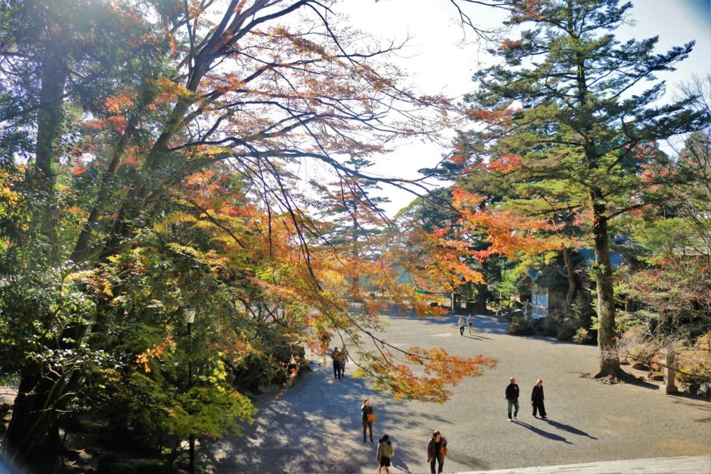 霧島神宮の紅葉