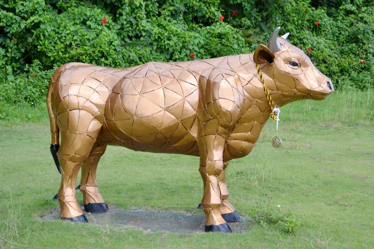 与論島の黄金牛