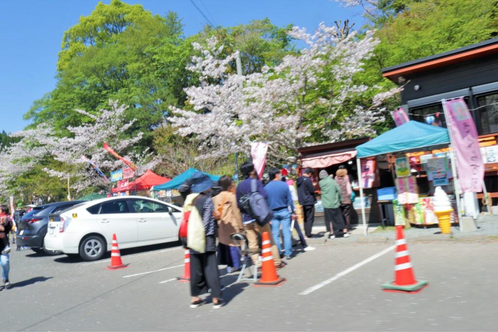 観音ヶ池公園の桜饅頭