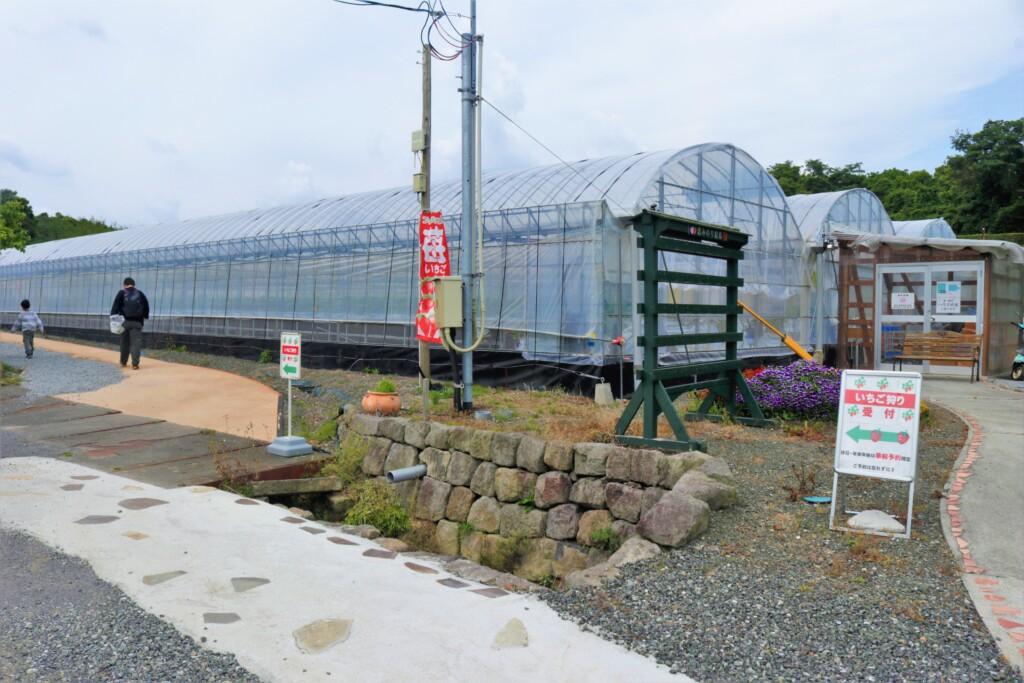 コモレビ農園